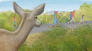 Tumamoc App illustration - deer watching people