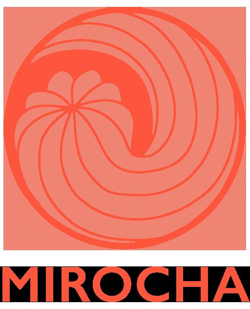Paul Mirocha UX Design